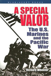 A_Special_Valor:_The_U.S._Mari