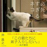 必死すぎるネコ (TATSUMI MOOK)