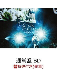 """【先着特典】Live Tour 2021 """"We are in bloom!"""" at Tokyo Garden Theater(通常盤 BD)【Blu-ray】(斉藤壮馬オリジナルブロマイド) [ 斉藤壮馬 ]"""
