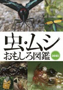 虫・ムシ おもしろ図鑑 DVDセット [ (趣味/教養) ]