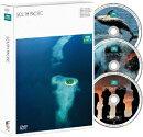 BBC EARTH サウス・パシフィック DVD-BOX [episode 1-6]