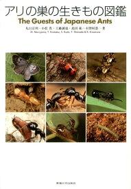 アリの巣の生きもの図鑑 [ 丸山宗利 ]