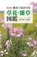 散歩で見かける草花・雑草図鑑改訂版