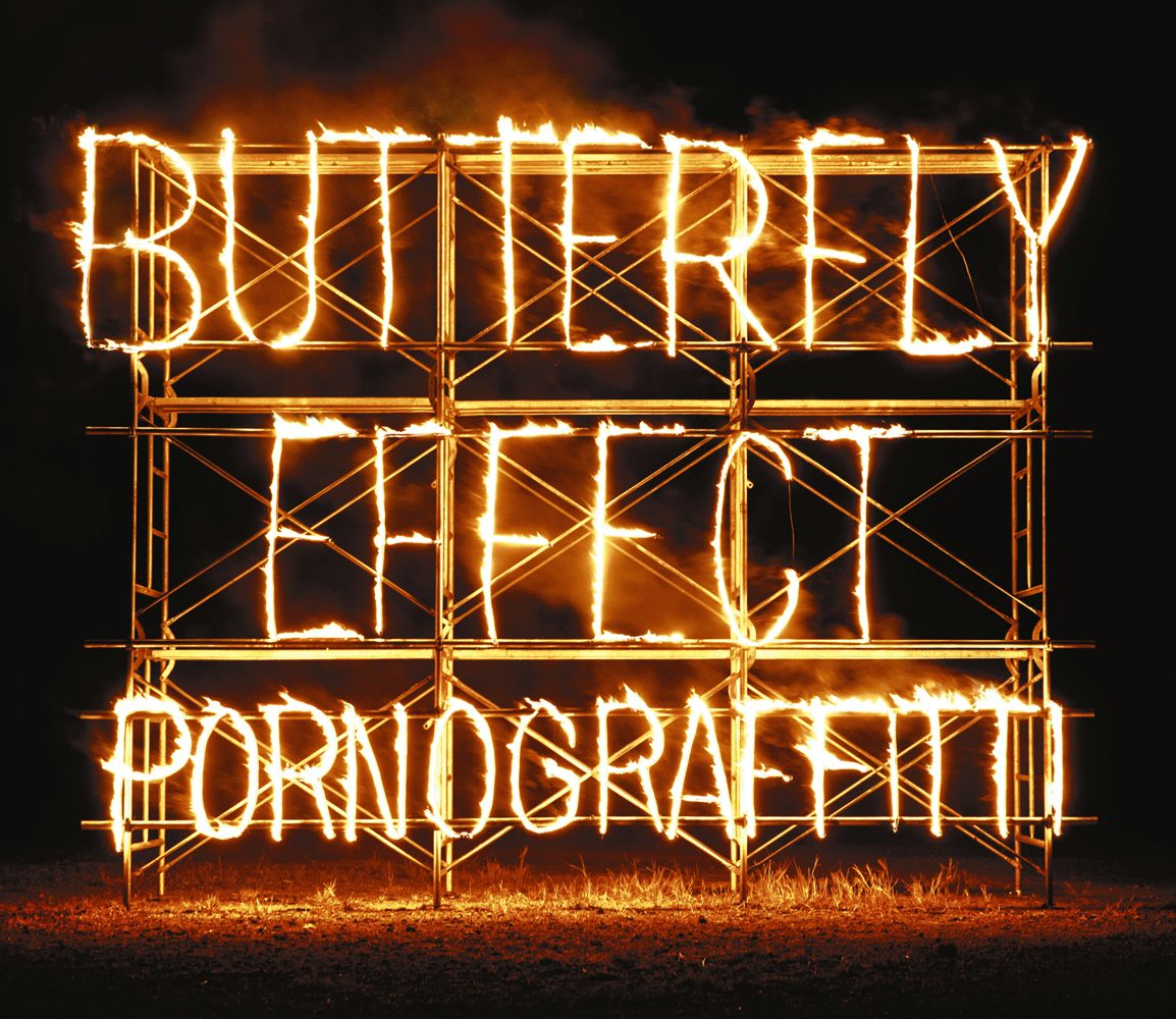 BUTTERFLY EFFECT (初回限定盤 2CD+DVD) [ ポルノグラフィティ ]