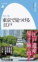 カラー版 東京で見つける江戸 (975)