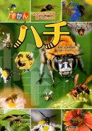ずかんハチ