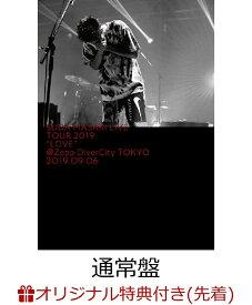 """【楽天ブックス限定先着特典】菅田将暉 LIVE TOUR 2019 """"LOVE""""@Zepp DiverCity TOKYO 2019.09.06(通常盤)(オリジナルポーチ付き) [ 菅田将暉 ]"""
