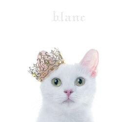 "BEST SELECTION ""blanc"" (初回限定盤B CD+DVD)"