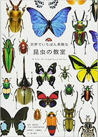 世界でいちばん素敵な昆虫の教室 [ 須田研司(むさしの自然史研究会) ]