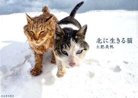 北に生きる猫 [ 土肥 美帆 ]