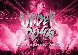 EXILE SHOKICHI LIVE TOUR 2019 UNDERDOGG(初回生産限定盤)【Blu-ray】 [ EXILE SHOKICHI ]