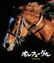 オルフェーヴル 〜金色の伝説〜【Blu-ray】 [ (競馬) ]