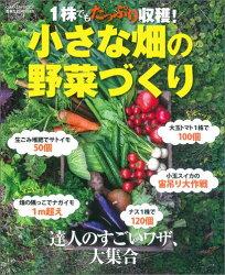 小さな畑の野菜づくり