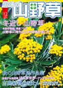 趣味の山野草 2010年 12月号 [雑誌]