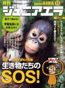 ジュニアエラ 2010年 11月号 [雑誌]