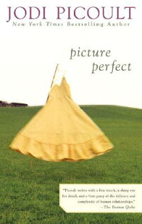 PICTURE_PERFECT(C)