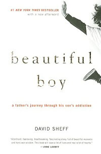 Beautiful_Boy:_A_Father's_Jour