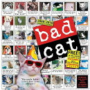BAD CAT:2010(WALL)