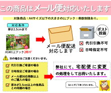 (2016-0001)埼玉福祉会SAIFUKU「ぼくの家はかえで荘」/やさしくよめる本-LLブック