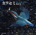 カワセミ 青い鳥見つけた/嶋田忠【1000円以上送料無料】