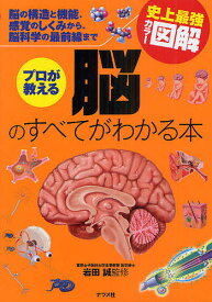 プロが教える脳のすべてがわかる本 脳の構造と機能、感覚のしくみから、脳科学の最前線まで/岩田誠【1000円以上送料無料】