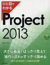 ひと目でわかるProject 2013/大石守【1000円以上送料無料】