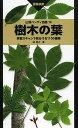 樹木の葉 実物スキャンで見分ける1100種類 画像検索/林将之【1000円以上送料無料】