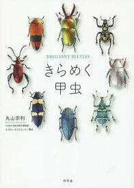 きらめく甲虫/丸山宗利【1000円以上送料無料】