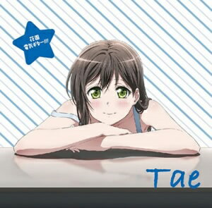 TVアニメ「BanG Dream!」キャラクターソング 花園たえ「花園電気ギター!!!」/大塚紗英(花園たえ)【1000円以上送料無料】