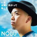いま、太陽に向かって咲く花/NOBU【1000円以上送料無料】