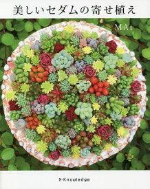 美しいセダムの寄せ植え/MAi【1000円以上送料無料】
