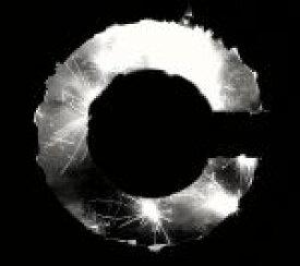 【中古】 WAVE RUNNER(初回限定盤)(デジパック仕様) /capsule 【中古】afb