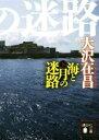 【中古】 海と月の迷路(下) 講談社文庫/大沢在昌(著者) 【中古】afb