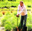 【中古】 ポール・スミザーのガーデン講座 選ぶことから植えるまで /ポールスミザー【著】 【中古】afb