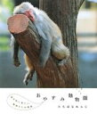 【中古】 おやすみ動物園 眠る前に見たい動物たちの寝顔 /たちばなれんじ【著】 【中古】afb