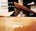 【中古】 写真集 まるです。箱を愛し過ぎなねこ。 /mugumogu【写真・文】 【中古】afb
