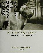 【中古】 どうして犬が好きかっていうとね /江國香織(訳者),キムレヴィン(その他) 【中古】afb