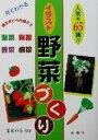 【中古】 見てわかるイラスト野菜づくり ワイドブックス/菜菜の会(著者) 【中古】afb