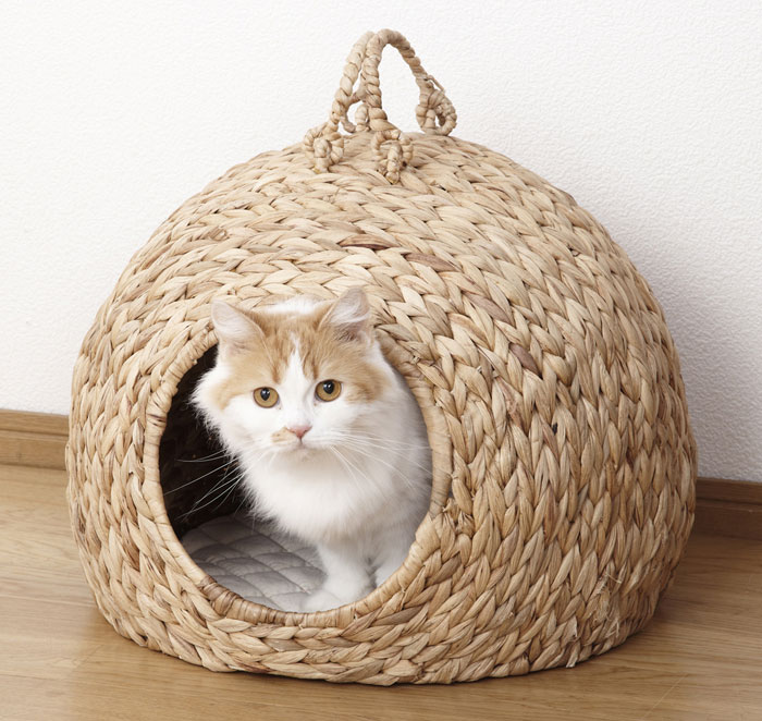 送料無料 ペットチグラ 大 ペットちぐら 猫ちぐら ねこちぐら 猫つぐら ねこつぐら ペットハウス ネコハウス キャットハウス ねこ ちぐら ペットちぐら 猫 犬 ペットハウス 猫 小屋 カゴ ネコ 小型犬 つぐら 寝床 キャットハウス 28636