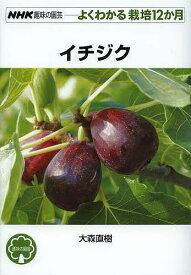 イチジク/大森直樹【合計3000円以上で送料無料】