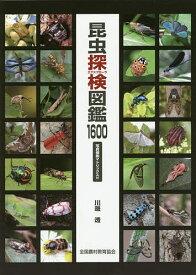 昆虫探検(エクスプローラ)図鑑1600/川邊透