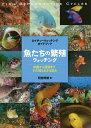 魚たちの繁殖ウォッチング 求愛から産卵まで、その知られざる営み/阿部秀樹【2500円以上送料無料】