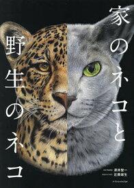 家のネコと野生のネコ/澤井聖一【合計3000円以上で送料無料】