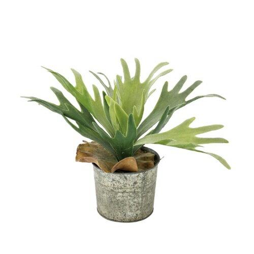 DECOR IMITAION GREEN PLANTS TADY5170 □【CR1】 造花 イミテーション 人工 観葉植物 多肉植物ガーデン 癒し デコレーション スパイス SPICE クリスマス プレゼント