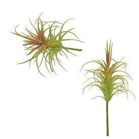 エアプランツ アートプランツティランジア E GF63 □□ CL2 カルナック フェイクグリーン オブジェ 置物 造花 花 フラワー ディスプレイ プレゼント