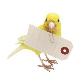 カナリア BIRDIE BILL 2371 □□ BR6 magnet 磁石 マグネット キュート ディスプレイ 動物 鳥 オブジェ 置物 磁石 おしゃれ インテリア バード マグネット コレクション インスタ 雑貨 プレゼント