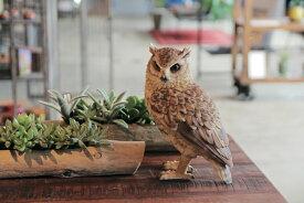 PET BANK LONGEARD OWL 1099 □□ BR6 magnet フクロウ オウル 貯金箱 コインバンク キュート バンク 動物 置物 ガーデン オーナメント インテリア コレクション インスタ 雑貨 プレゼント
