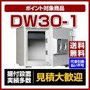 【送料無料】【ポイント2倍】ダイヤセーフ [DW30-1]-小型耐火金庫 2キータイプ(家庭用)