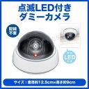 【送料無料】【ポイント2倍】空き巣、万引き、不審者対策に/点滅LED付きダミーカメラ[HAC-1460]-ハック