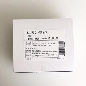 ミニサンドチョコ 9g×100個 【菓子材料・パン材料・チョコレート・クロワッサン・パンオショコラ】